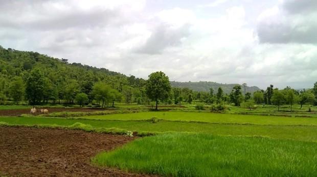 Photography-Nature-Landscape-Rainy-Season