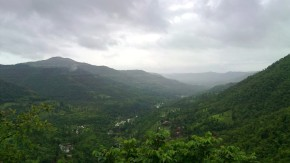Photography-Nature-Landscape-Rainy-Season-Greenery