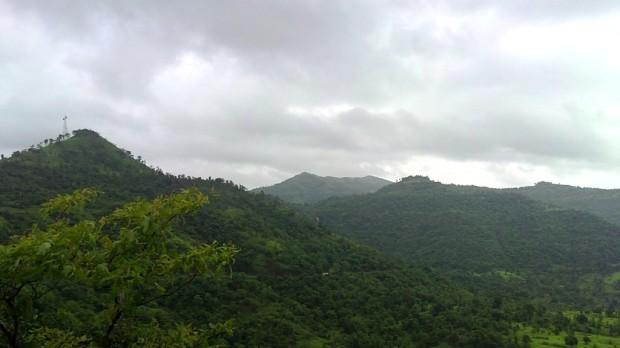 Photography-Nature-Landscape-Rainy-Season-Greenery-Lucid