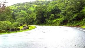 Greenery-Nature-Rainy-Season-Photography