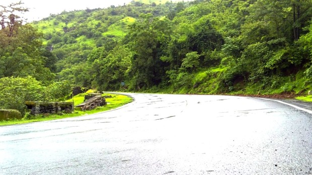 Greenery-Nature-Rainy-Season-Photography