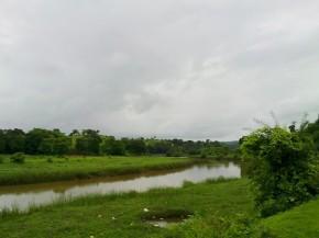 Photography-Landscape-Nature-Pictures-Greenery-Rainy-Season