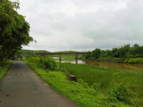 Photography-Landscape-Nature-Pictures-Greenery-Monsoon