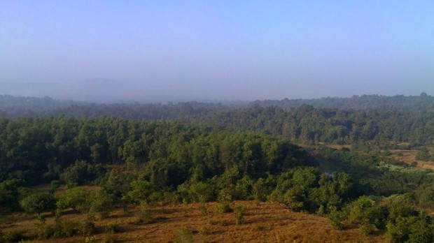 Photography-Nature-Landscape-Konkan-Sunrise-Pictures
