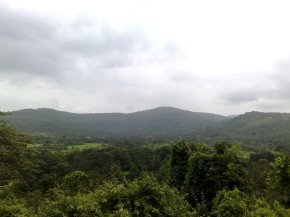 Photography-Naute-Landscape-Pictures-Monsoon-Greenery