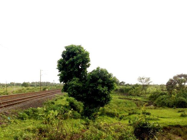 Photography-Nature-Landscape-Pictures