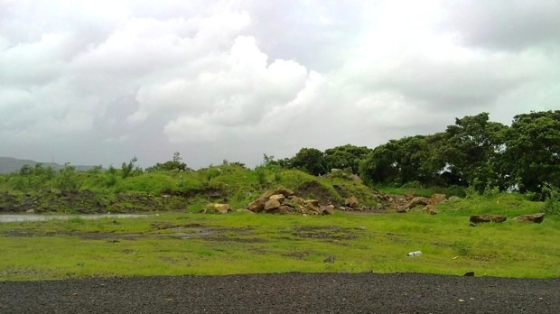 Photography-Nature-Monsoon-Season-Greenery-Pictures