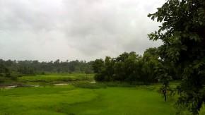 Beautiful Nature Landscape Photography Website