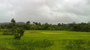 Green Landscape Nature Pictures