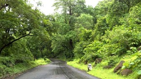Miksang Nature Monsoon Pictures
